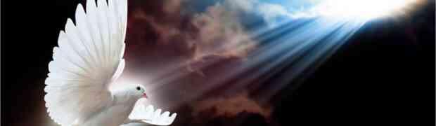 Las alas del Espíritu
